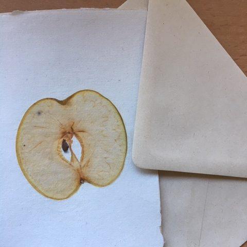 kaart met envelop: appelschijf op handgeschept papier