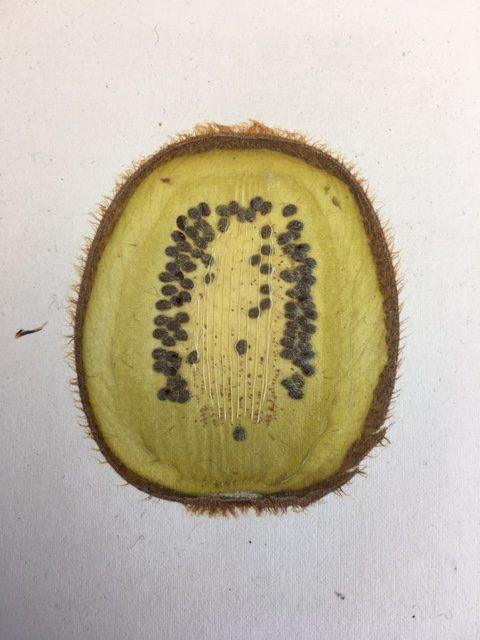 schijf citroen in handgeschept papier