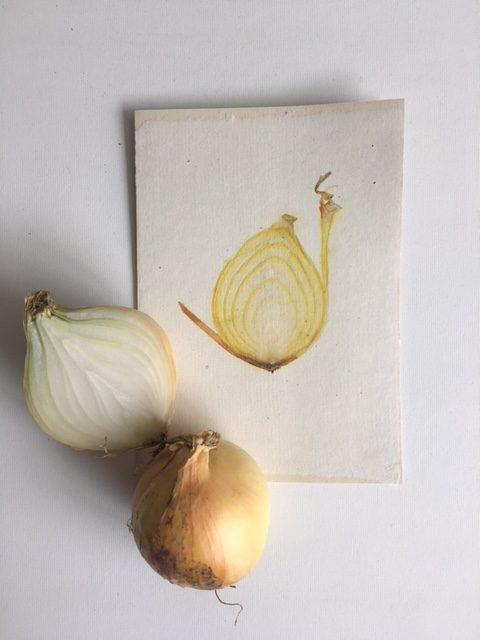 schijf witte ui in handgeschept papier