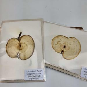 fruitkaart appel: ingedroogde appelschijf in handgeschept papier